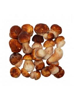 Белые грибы целые, 2 сорт, индивид. заморозка, 4кг/кор, Россия (КОД 31079) (-18*С)